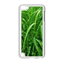 Grass Apple Ipod Touch 5 Case (white) by Siebenhuehner