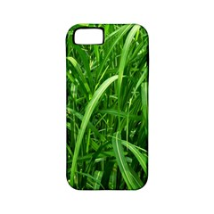 Grass Apple Iphone 5 Classic Hardshell Case (pc+silicone) by Siebenhuehner