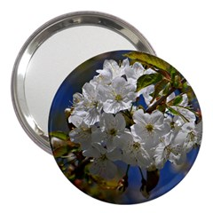 Cherry Blossom 3  Handbag Mirror by Siebenhuehner