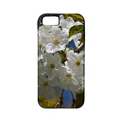 Cherry Blossom Apple Iphone 5 Classic Hardshell Case (pc+silicone) by Siebenhuehner