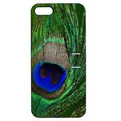 Peacock Apple Iphone 5 Hardshell Case With Stand by Siebenhuehner