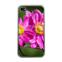 Flower Apple Iphone 4 Case (clear) by Siebenhuehner