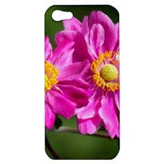 Flower Apple Iphone 5 Hardshell Case by Siebenhuehner