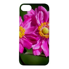 Flower Apple Iphone 5s Hardshell Case by Siebenhuehner