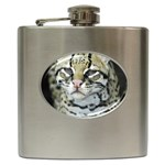 416442276_99fbe2a5a3 Hip Flask (6 oz)
