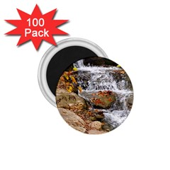 Waterfall 1 75  Button Magnet (100 Pack) by uniquedesignsbycassie