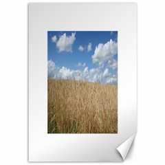 Grain And Sky Canvas 12  X 18  (unframed) by plainandsimple