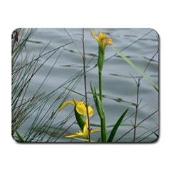 flag_iris5 Small Mousepad by wadasthedruid