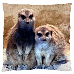 Meerkat Large Cushion Case (two Sided)  by WonderfulDreamPicture