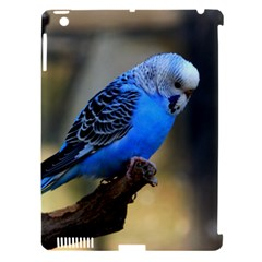 Blue Budgie Apple Ipad 3/4 Hardshell Case (compatible With Smart Cover) by WonderfulDreamPicture
