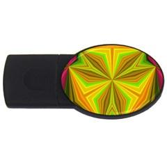 Abstract 4gb Usb Flash Drive (oval) by Siebenhuehner