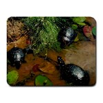 Baby Turtles Small Mousepad