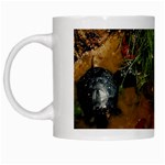 Baby Turtles White Mug