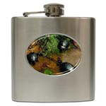 Baby Turtles Hip Flask (6 oz)