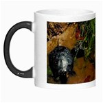 Baby Turtles Morph Mug