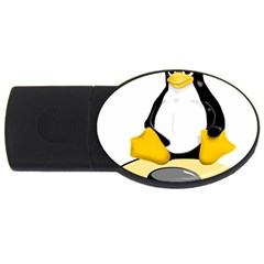 Linux Black Side Up Egg 4gb Usb Flash Drive (oval)