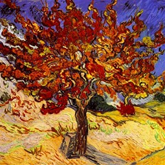 Vincent Van Gogh Mulberry Tree Canvas 12  X 12  (unframed) by MasterpiecesOfArt