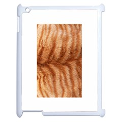Cat Coat 1 Apple Ipad 2 Case (white) by BrilliantArtDesigns