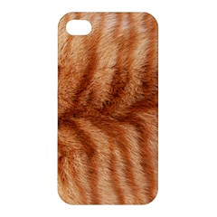 Cat Coat 1 Apple Iphone 4/4s Premium Hardshell Case by BrilliantArtDesigns