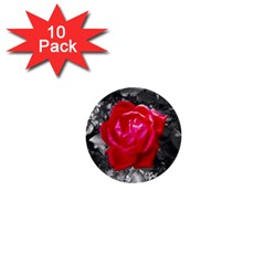 Red Rose 1  Mini Button (10 Pack) by jotodesign