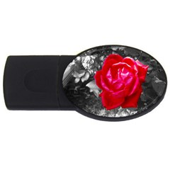 Red Rose 4gb Usb Flash Drive (oval) by jotodesign