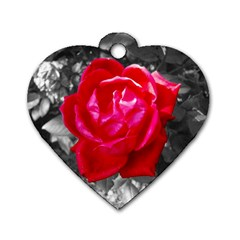 Red Rose Dog Tag Heart (one Sided)  by jotodesign