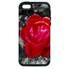 Red Rose Apple Iphone 5 Hardshell Case (pc+silicone) by jotodesign
