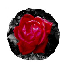 Red Rose 15  Premium Round Cushion  by jotodesign