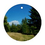 land2 Ornament (Round)