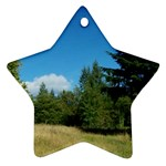 land2 Ornament (Star)