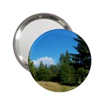 land2 2.25  Handbag Mirror