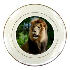 Regal Lion Porcelain Display Plate by AnimalLover