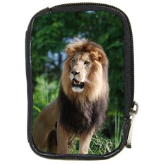 Regal Lion Compact Camera Leather Case by AnimalLover