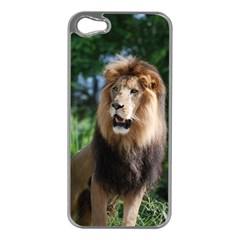 Regal Lion Apple Iphone 5 Case (silver)