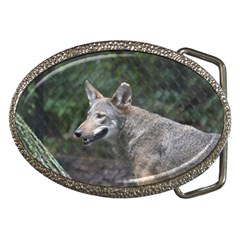 Shdsc 0417 10502cow Belt Buckle (oval)