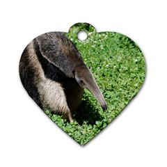 Giant Anteater Dog Tag Heart (one Sided)