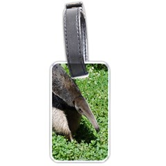 Giant Anteater Luggage Tag (Two Sides)