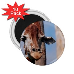 Cute Giraffe 2 25  Button Magnet (10 Pack) by AnimalLover