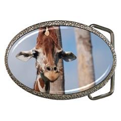 Cute Giraffe Belt Buckle (oval)