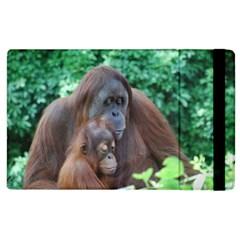 Orangutan Family Apple iPad 3/4 Flip Case by AnimalLover