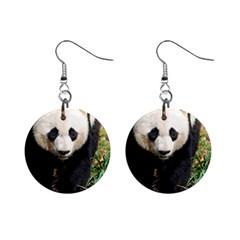 Giant Panda Mini Button Earrings
