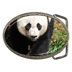 Giant Panda Belt Buckle (oval)