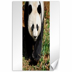 Giant Panda Canvas 20  x 30  (Unframed) by AnimalLover