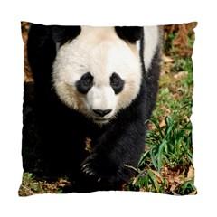Giant Panda Cushion Case (single Sided)  by AnimalLover