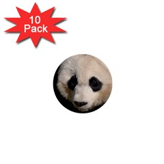 Adorable Panda 1  Mini Button (10 Pack) by AnimalLover