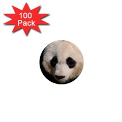 Adorable Panda 1  Mini Button Magnet (100 Pack) by AnimalLover