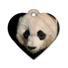 Adorable Panda Dog Tag Heart (two Sided) by AnimalLover