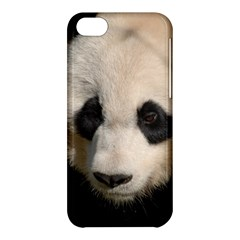 Adorable Panda Apple Iphone 5c Hardshell Case by AnimalLover
