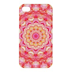 Yellow Pink Romance Apple Iphone 4/4s Premium Hardshell Case by Zandiepants