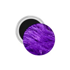Purple Tresses 1 75  Button Magnet by FunWithFibro